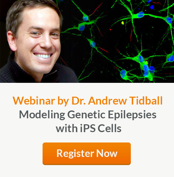 Register here to attend a live webinar by Dr. Andrew Tidball on Modeling Genetic Epilepsies with iPS Cells