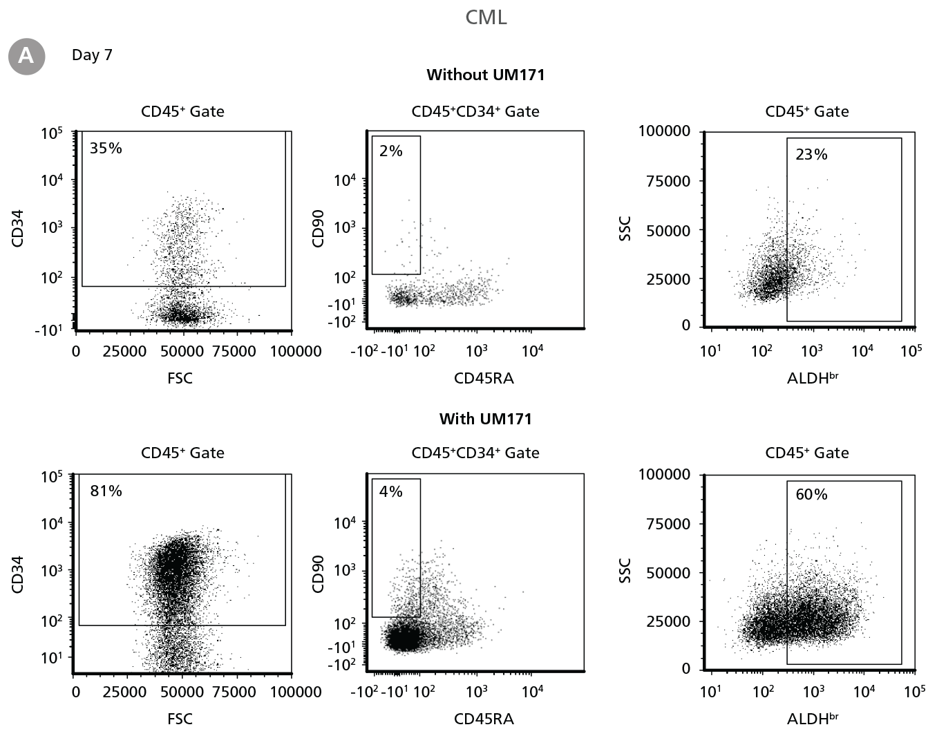 Figure 4. Expansion of CD34+ CML Cells Cultured in StemSpan™ SFEM II Medium