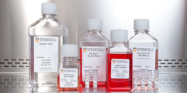 Cell Culture Media and Supplements