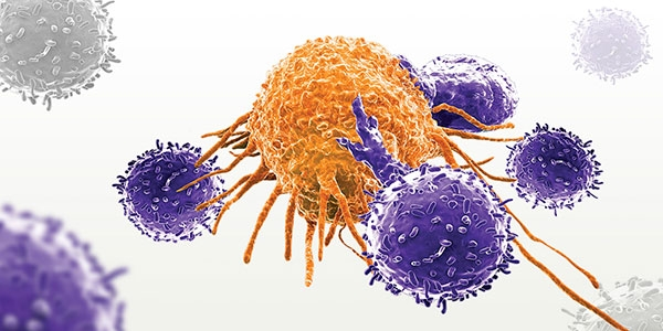 T Cell Therapy