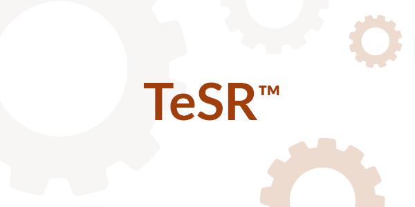 TeSR™