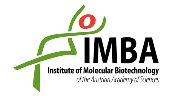 STEMCELL Technologies Signs Exclusive Agreement with the Institute of Molecular Biotechnology to Commercialize Cerebral Organoid Culture Systems