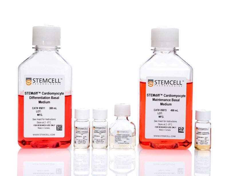 STEMdiff™ Cardiomyocyte Differentiation Kit