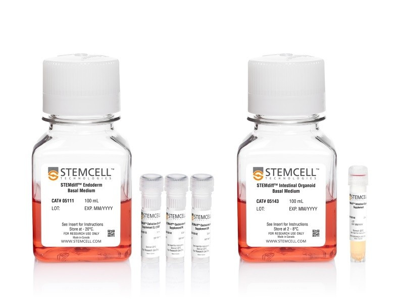 STEMdiff™ Intestinal Organoid Kit|05140
