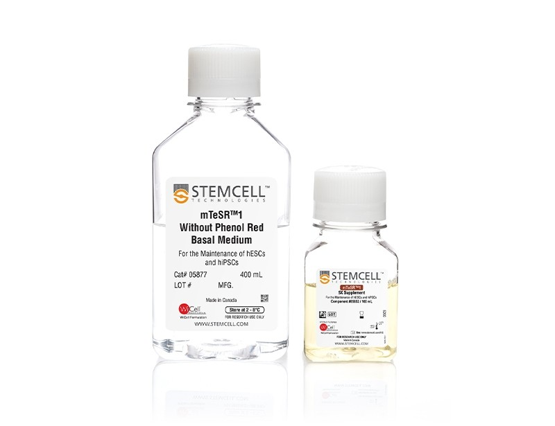 mTeSR™1 Without Phenol Red