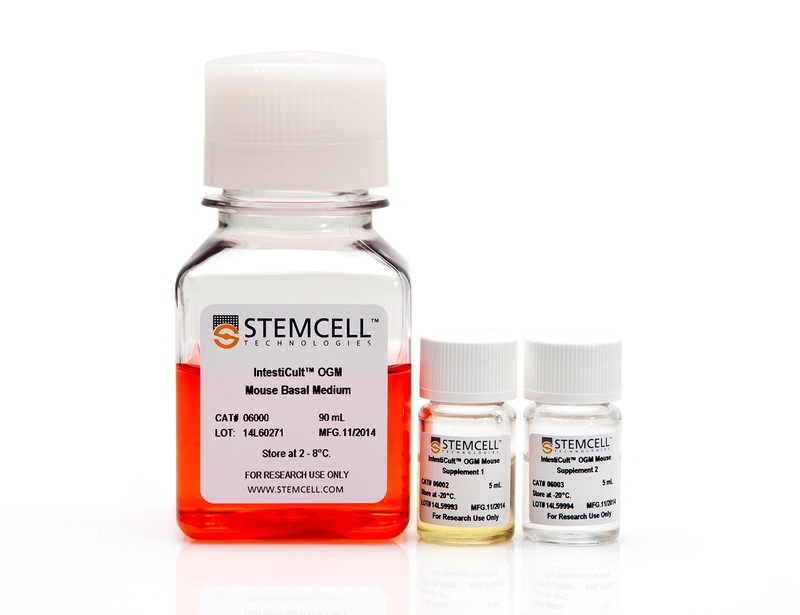 IntestiCult™ Organoid Growth Medium (Mouse)
