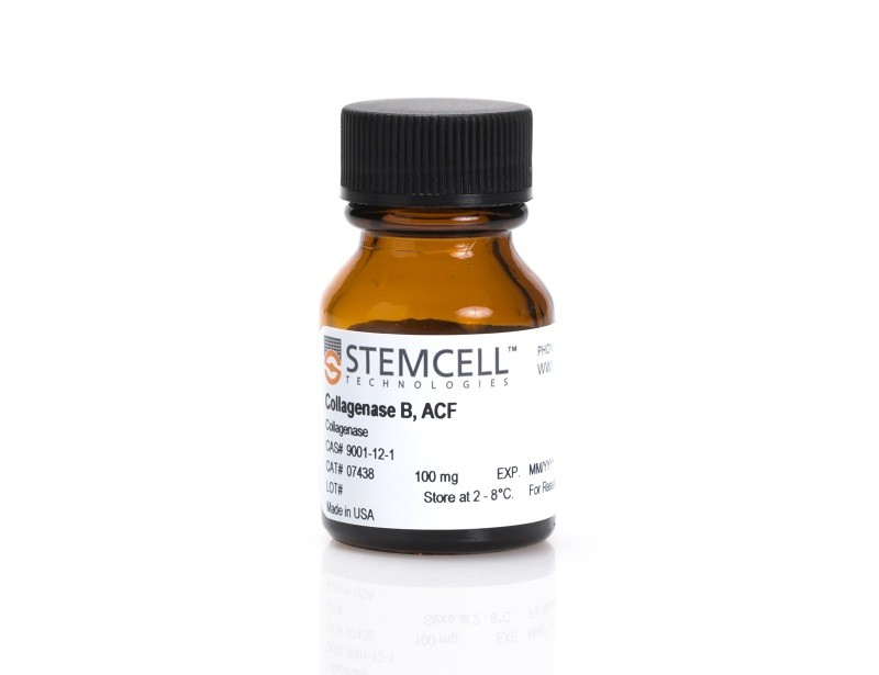 Collagenase B, ACF