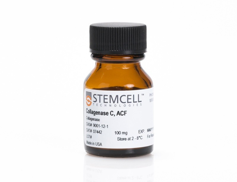Collagenase C, ACF