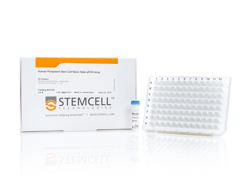 Human Pluripotent Stem Cell Naïve State qPCR Array
