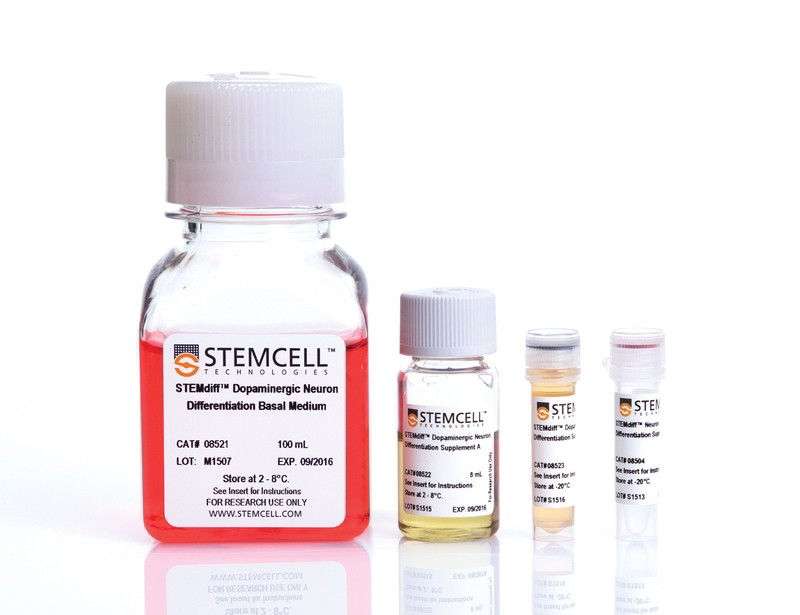 STEMdiff™ Dopaminergic Neuron Differentiation Kit