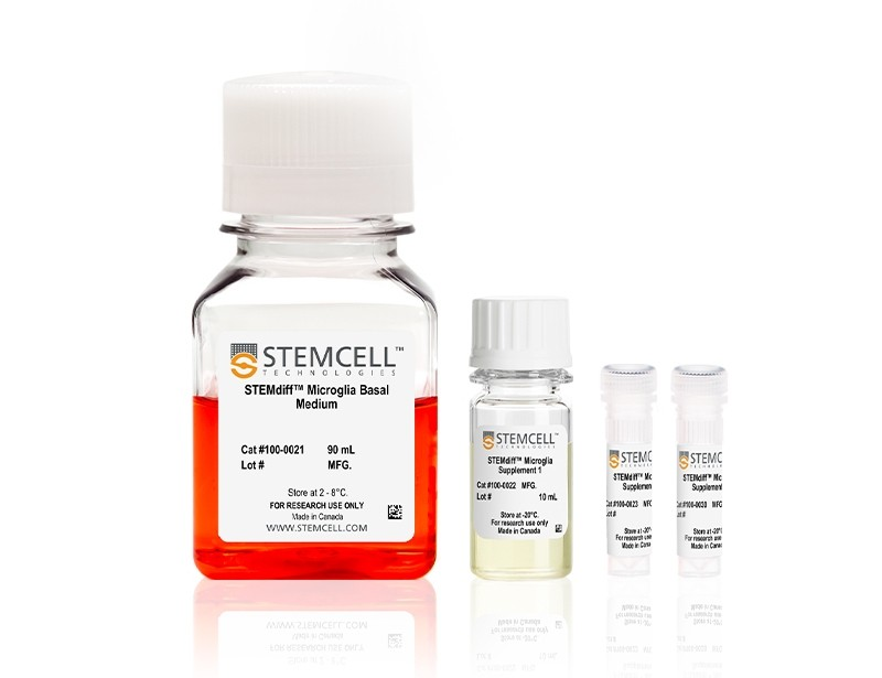 STEMdiff™ Microglia Maturation Kit