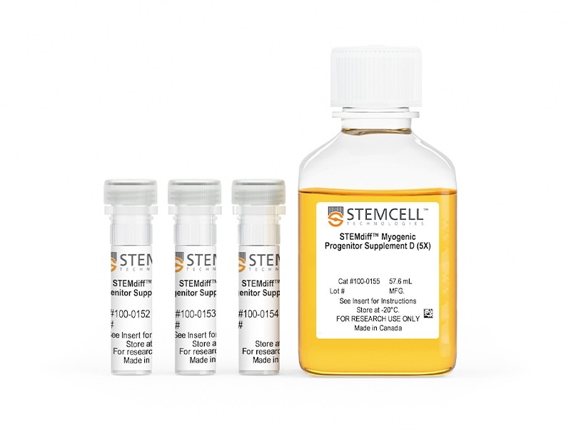STEMdiff™ Myogenic Progenitor Supplement Kit