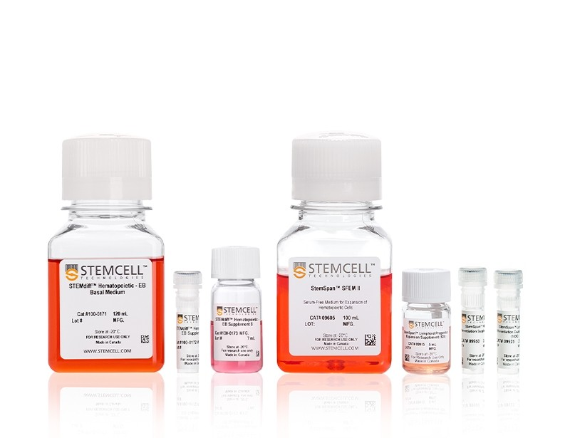 STEMdiff™ NK Cell Kit
