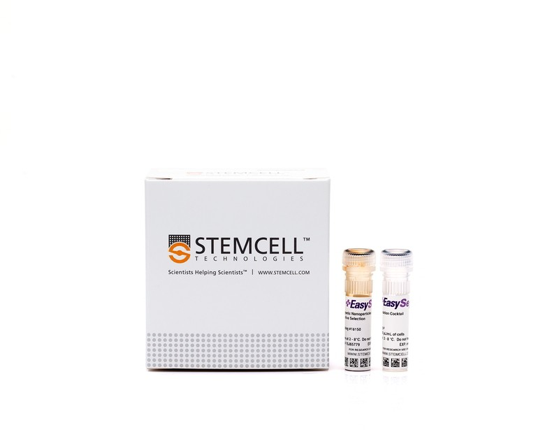 EasySep™ hESC and hiPSC-Derived CD34 Positive Selection Kit