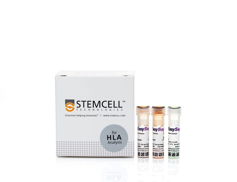 EasySep™ HLA B Cell Enrichment Kit