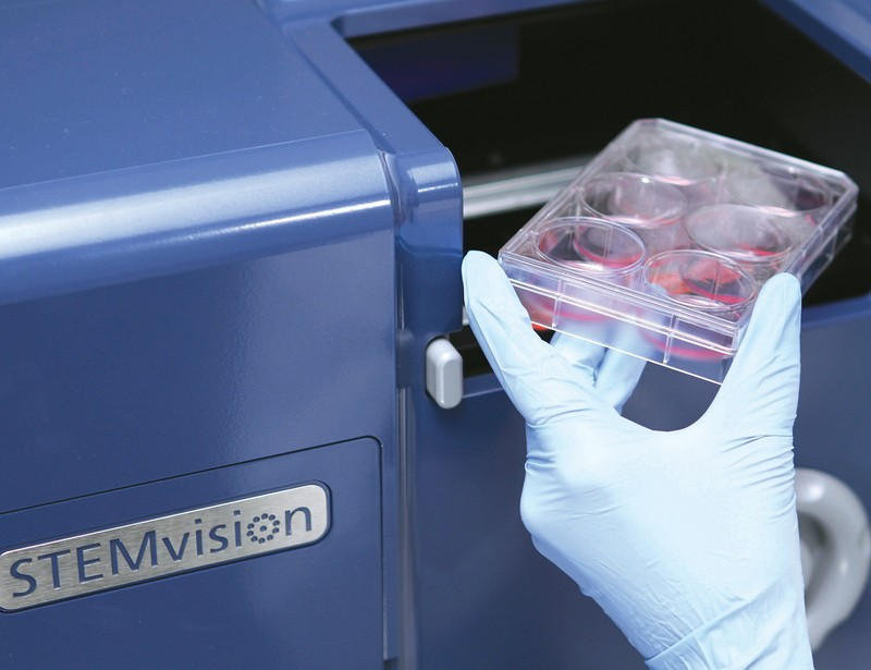 STEMvision™ Human Cord Blood 7-Day CFU Analysis Package
