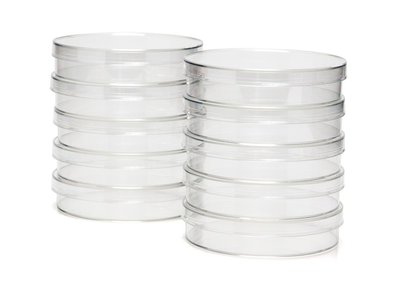 100 mm Treated Tissue Culture Dishes