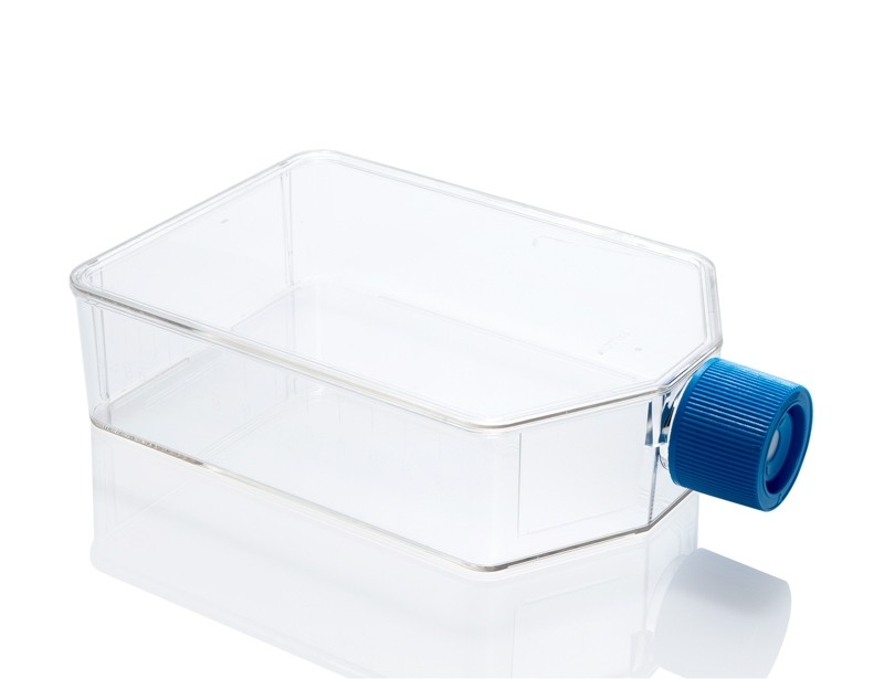 Cell Culture Flask, 175 cm²
