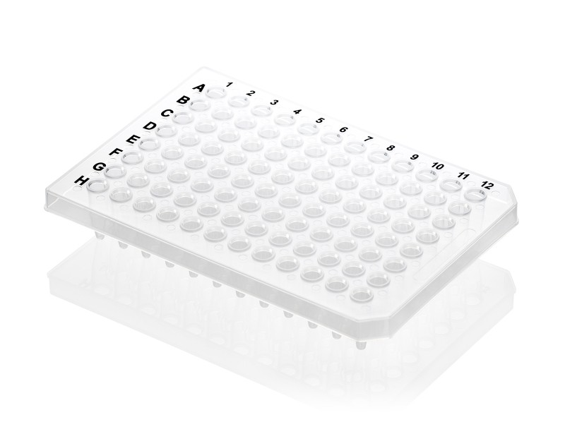 Axygen® 96-Well PCR Microplate, Half Skirt, Double Notch