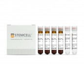 EasySep™ Direct Human B-CLL Cell Isolation Kit