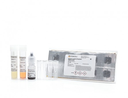 MegaCult™-C Staining Kit for CFU-Mk