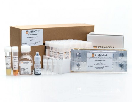 MegaCult™-C Complete Kit with Cytokines