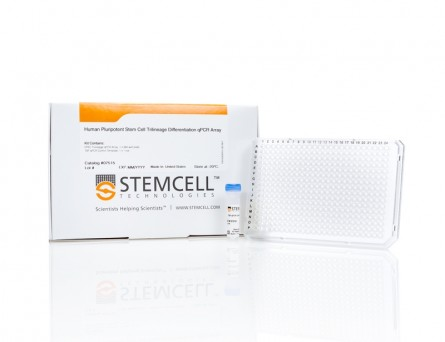 Human Pluripotent Stem Cell Trilineage Differentiation qPCR Array