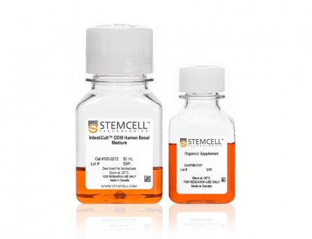 IntestiCult™ Organoid Differentiation Medium (Human)