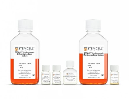 STEMdiff™ Atrial Cardiomyocyte Differentiation Kit