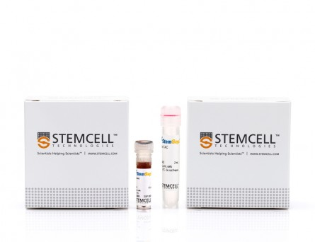 StemSep™ Human Hematopoietic Progenitor Cell Enrichment Kit|14056