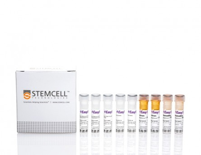 EasySep™ Human Memory B Cell Isolation Kit