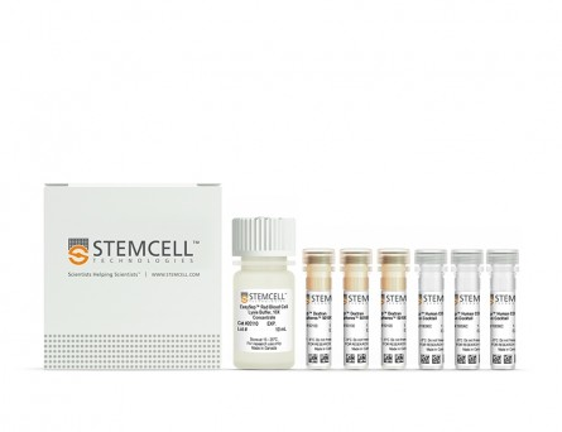 EasySep™ Human Whole Blood CD34 Positive Selection Kit II|17879