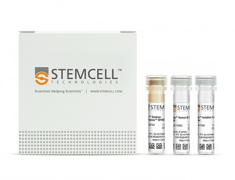 EasySep™ Human B Cell Isolation Kit|17954