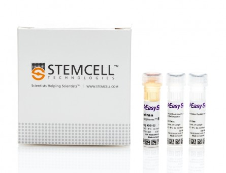 EasySep™ Human B Cell Enrichment Kit II Without CD43 Depletion|17963
