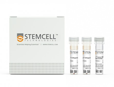 EasySep™ Human NK Cell Enrichment Kit|19055