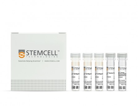EasySep™ Human CD4+CD127lowCD49d- Regulatory T Cell Enrichment Kit|19232