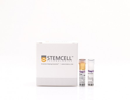 EasySep™ Rat CD4+ T Cell Isolation Kit