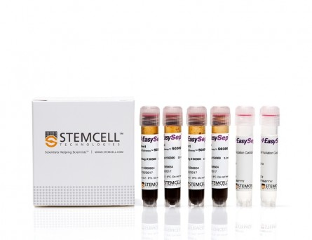 EasySep™ Direct Human CD4+ T Cell Isolation Kit