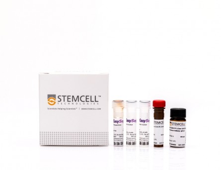 EasySep™ Mouse Mammary Stem Cell Enrichment Kit