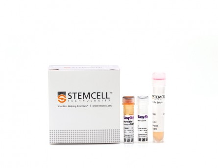 EasySep™ Mouse T Cell Isolation Kit