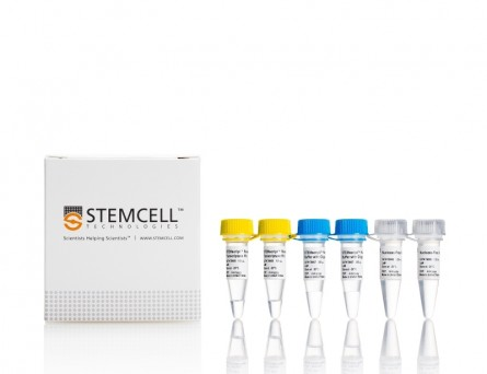 STEMscript™ cDNA Synthesis Kits|79003