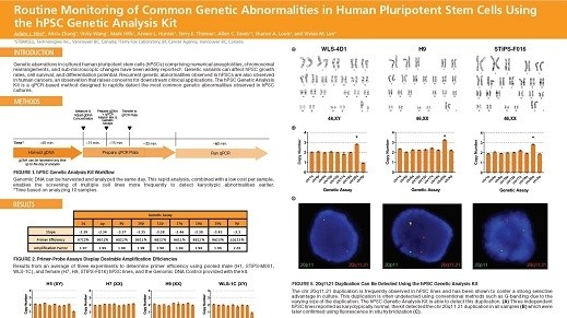 Routine Monitoring of Common Genetic Abnormalities in Human Pluripotent Stem Cells