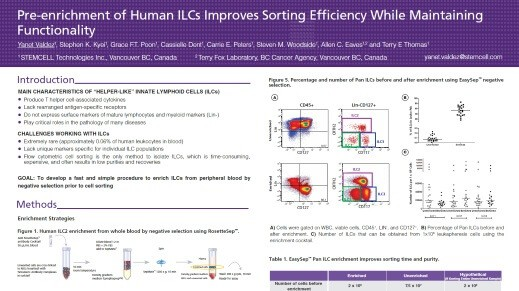 Pre-enrichment of Human ILCs Improves Sorting Efficiency While Maintaining Functionality