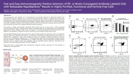 Fast and Easy Immunomagnetic Positive Selection of PE- or Biotin-Conjugated Antibody Labeled Cells with Releasable Rapidspheres Results in Highly Purified, Functional and Particle-Free Cells