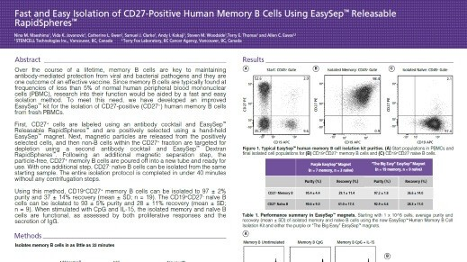 Fast and easy isolation of CD27-positive human memory B cells using EasySep™ Releasable RapidSpheres™