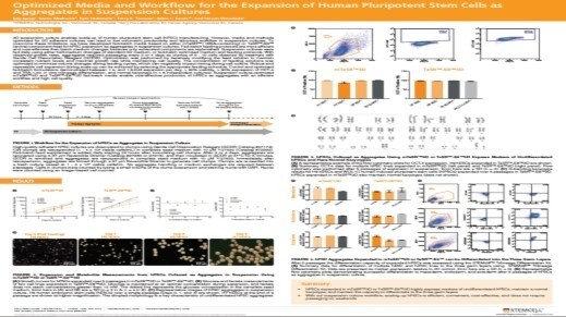 Optimized Media and Workflow for the Expansion of Human Pluripotent Stem Cells as Aggregates in Suspension Cultures