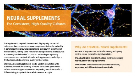 Neural Supplements For High-Quality Neural Cell Cultures