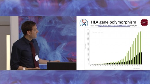 HLA Typing Considerations for Human Pluripotent Stem Cell Banking