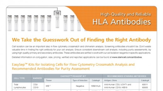 HLA Antibodies for Purity Assessment