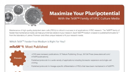 Maximize Your Pluripotential with the TeSR™ Family of hPSC Culture Media